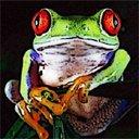 Скачать бесплатно Цветную картинку №0249 для мобильного телефона из раздела Животные, насекомые, рыбы, формат jpg