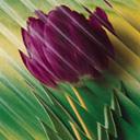 Скачать бесплатно Цветную картинку №0080 для мобильного телефона из раздела Растения, цветы, формат jpg