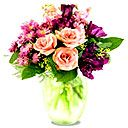 Скачать бесплатно Цветную картинку №0141 для мобильного телефона из раздела Растения, цветы, формат jpg